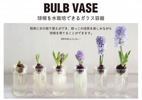POP_BULBVASE_A4_01